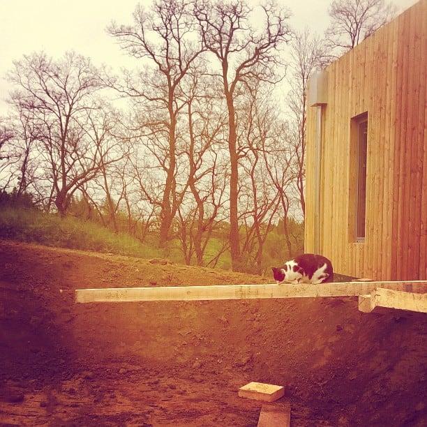 budujemy pomost, kładkę wejściową do domu, kot sąsiadów testerem :)